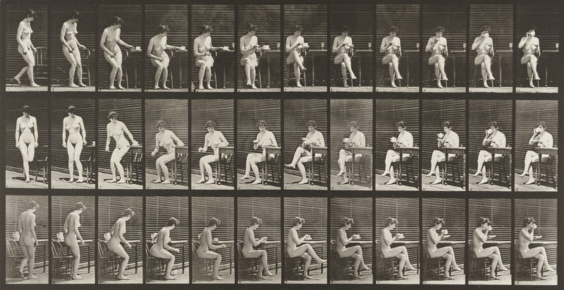 Nude woman sitting on a chair, crossing legs and drinking from a teacup (Animal Locomotion, 1887, plate 238)