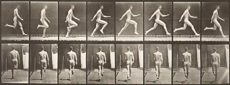 Nude man running at full speed (Animal Locomotion, 1887, plate 65)