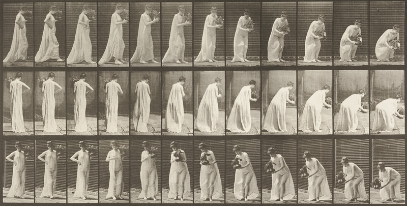 Semi-nude woman carrying and stooping with a vase (Animal Locomotion, 1887, plate 205)