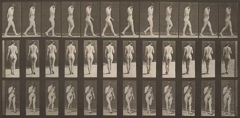 Nude woman walking keeping her right hand at her chin (Animal Locomotion, 1887, plate 14)