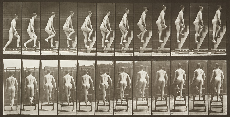 Nude man ascending a stepladder (Animal Locomotion, 1887, plate 109)