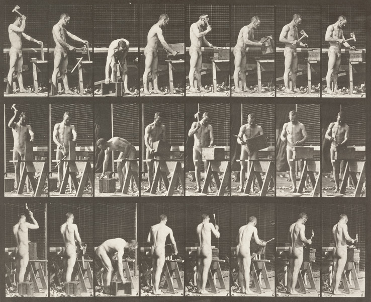 Man in pelvis cloth carpentering (Animal Locomotion, 1887, plate 507)