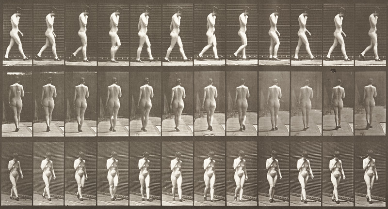 Nude woman walking with shoes on and right hand at chin (Animal Locomotion, 1887, plate 23)