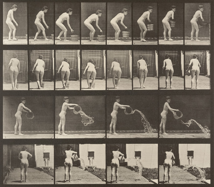 Nude woman emptying a bucket of water (Animal Locomotion, 1887, plate 401)