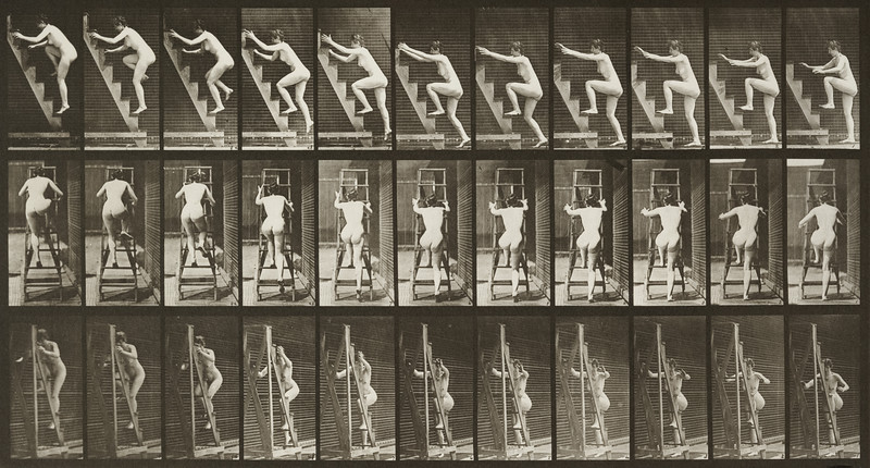 Nude woman turning ascending a stepladder (Animal Locomotion, 1887, plate 110)