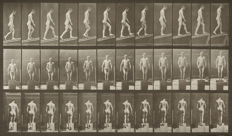 Nude man ascending an incline (Animal Locomotion, 1887, plate 74)