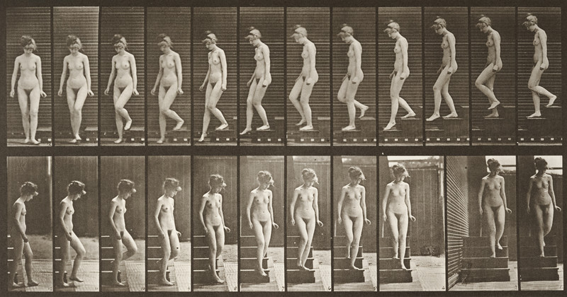 Nude woman descending stairs (Animal Locomotion, 1887, plate 137)