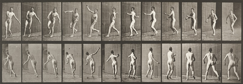 Nude man playing cricket, overarm bowling (Animal Locomotion, 1887, plate 290)