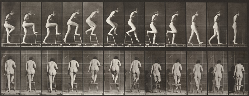 Nude woman stepping on and over a chair (Animal Locomotion, 1887, plate 180)