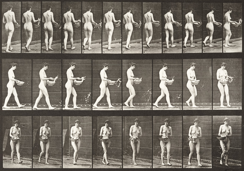 Nude woman walking, sprinkling water from a basin and turning around (Animal Locomotion, 1887, plate 43)