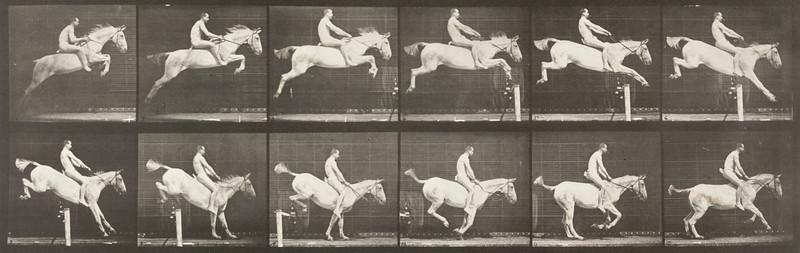 Horse Pandora jumping a hurdle, bareback, clearing and landing
