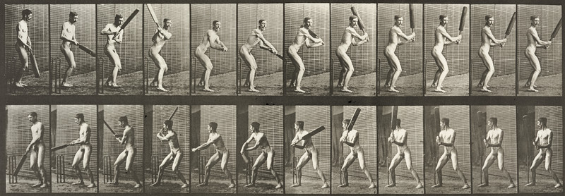 Nude man playing cricket, batting and back cut (Animal Locomotion, 1887, plate 293)