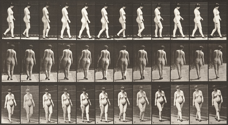 Nude woman walking with shoes on (Animal Locomotion, 1887, plate 24)