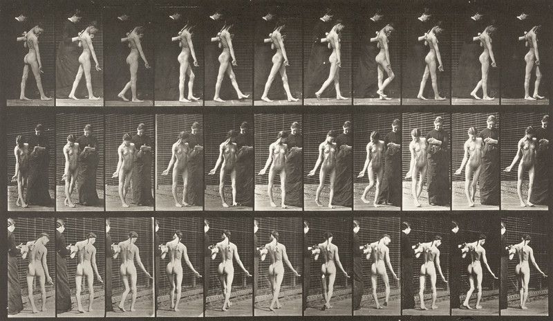 Nude girl spastically walking (Animal Locomotion, 1887, plate 541)