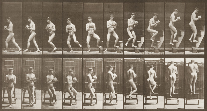 Nude man descending a stepladder (Animal Locomotion, 1887, plate 151)