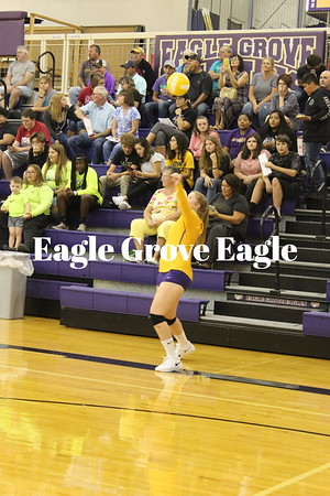 Eagle Volleyball 2019