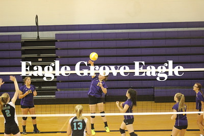 Volleyball  Aug. 2019