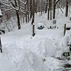 Deanna Hillard saw this snowy scene outside of her house in North Adams.