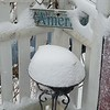 Juraye Moran sent us this snowy scene from her Pittsfield backyard.