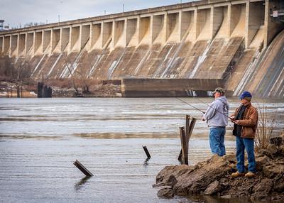 Eagles Below Bagnell Dam