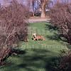 deer 1/27/70