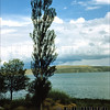 Mono Lake California 9/17/1950