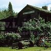 Bret Harte Cabin 5/7/1951