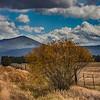 yamsi mountain ...