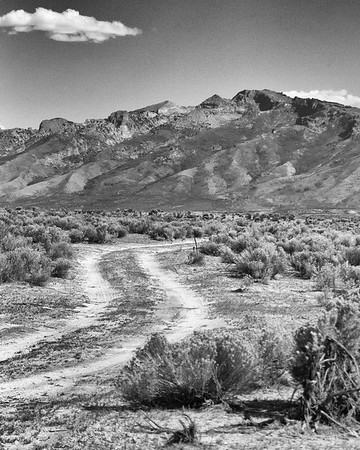 wander road ...