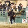 polishing your pants on saddle leather don't make you a rider ...