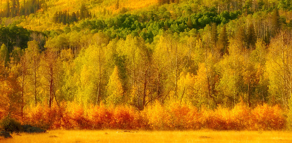 autumn sunrise in the hills ...