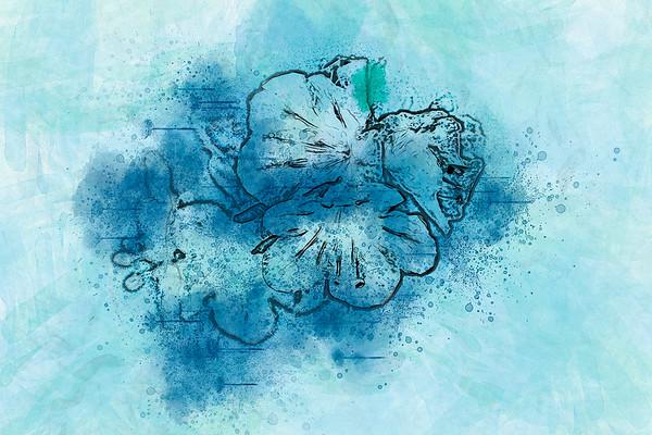 bewilderin' blue bloom ...