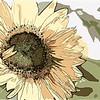 flat flower ...