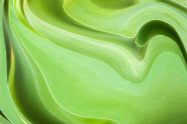 green blades ...