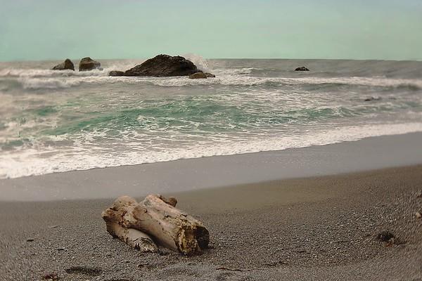 seaside serenity ...