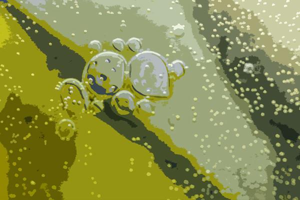 bubbled ...