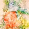 california orange ...