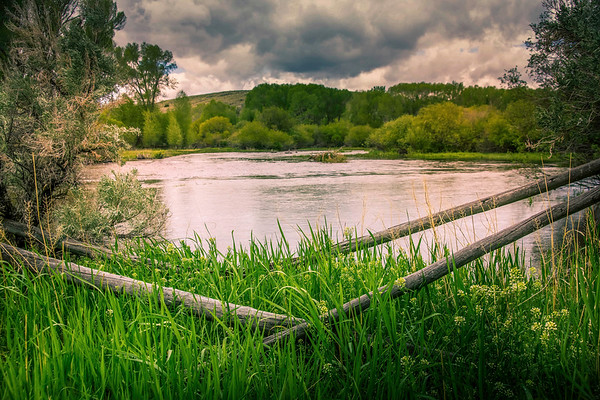 grasshopper creek ...