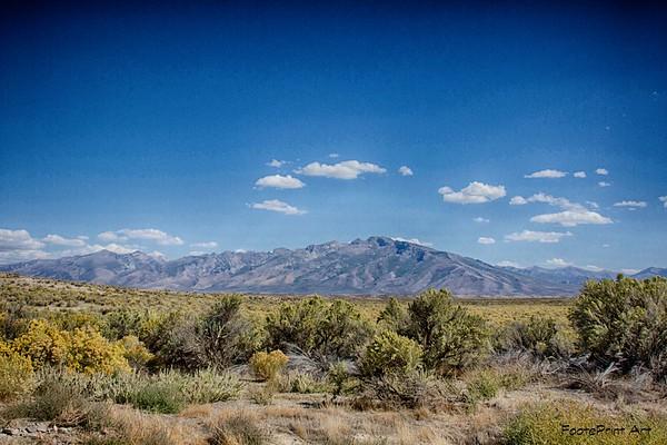 desertscape ...