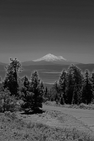 shasta's majesty