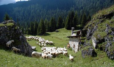 Europe 4: The Dolomites