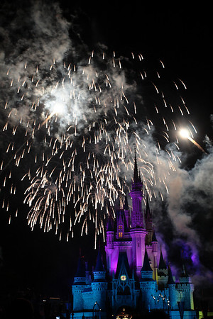 Disney World Day 8
