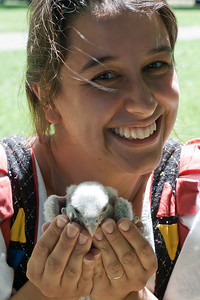 May 12, 2011: How often do you get to actually hold a falcon in the palm of your hand? I got to feed her earlier as well.   Photo by Vicki Valentine.