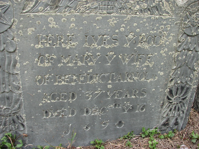 Close up of the stone as it looks today (2016) with lichen growth.