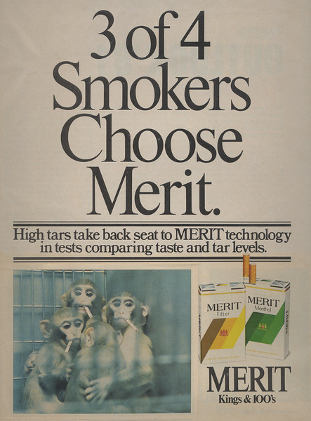 3 of 4 Smokers Choose Merit-monkeys smoking