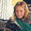 Casey at a fair. She always loved the animals. These look like sheep.