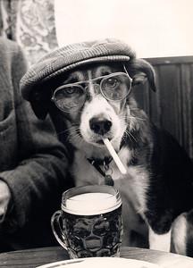 Old timer, Yorkshire, 1984