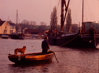 0001A-1 DM MAN AND DOG IN DINGHY, SAILING BARGE IN BACKGROUND,AT PIN MILL ON THE RIVER ORWELL,ENGLAND