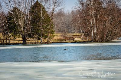 Floating on Corning Lake