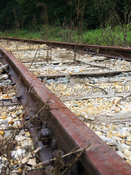 Things, Railroad Tracks<br /> <br /> [Project 1 - People, Places, and Things]